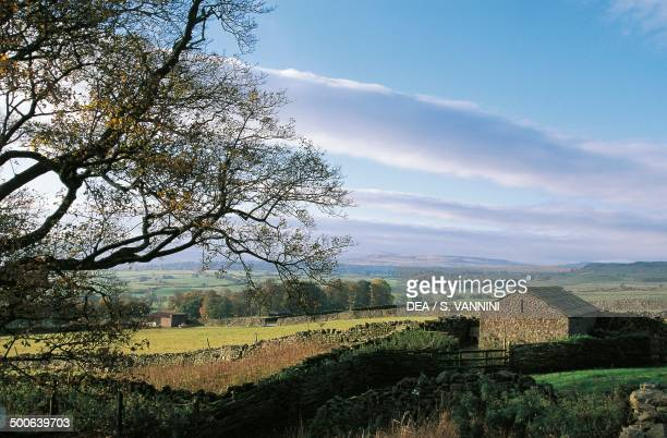 Landscape near Bolton castle North Yorkshire England United Kingdom