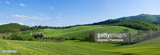 landscape near crespina - toscana foto e immagini stock