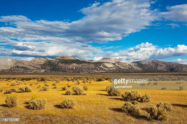 Landscape near Mono Lake