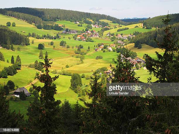 CONTENT] Landscape near Schluchsee a reservoir lake southeast of the Titisee in Black Forest Germany marked through green hills forests and meadows...