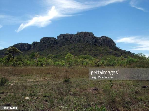landscape near são gonçalo do rio das pedras - serro - mg - brazil -112 - セラード ストックフォトと画像