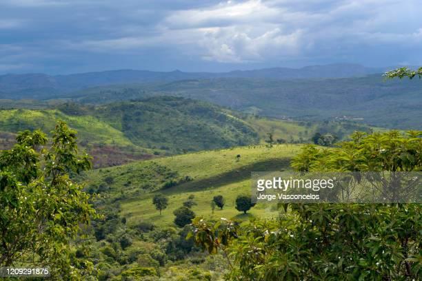 landscape near são gonçalo do rio das pedras - serro - vale do jequitinhonha - minas gerais - brazil - 291 - セラード ストックフォトと画像