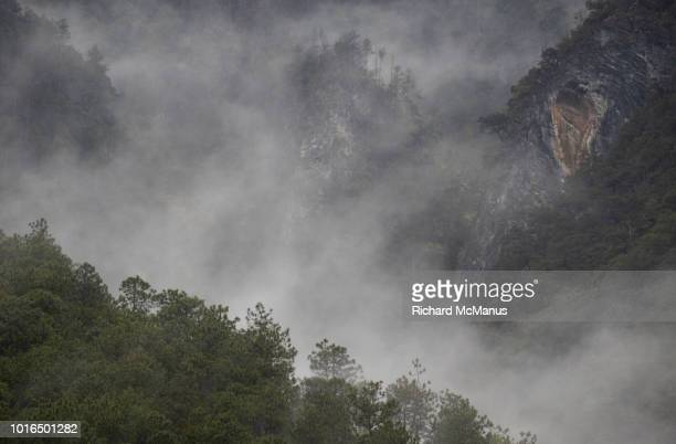 landscape near tacheng - yunnan snub nosed monkey stock pictures, royalty-free photos & images