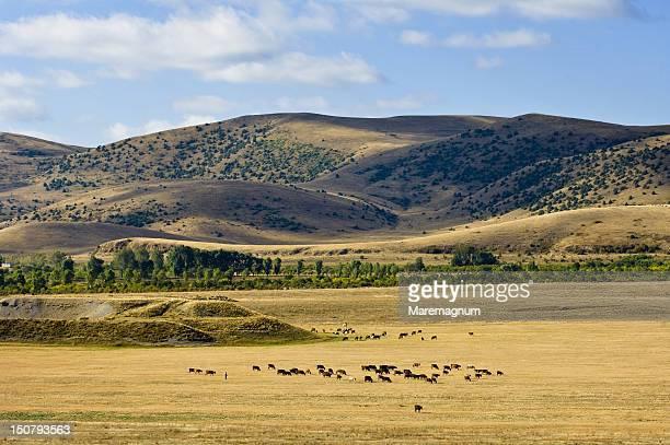 Landscape near Tsapatagh, Sevan, Armenia