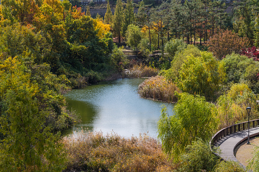 Landscape of a Park in Pangyo, South Korea - gettyimageskorea