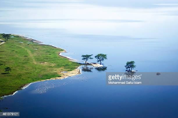 landscape of africa [lake nakuru] - lake nakuru stock photos and pictures