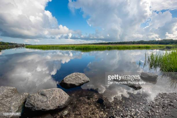 Landscape of Beach Marsh, Florida USA