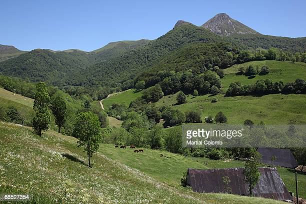 landscape of Cantal