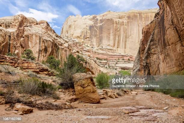 landscape of canyon, grand staircase-escalante national monument, utah, usa - grand staircase escalante national monument stock pictures, royalty-free photos & images