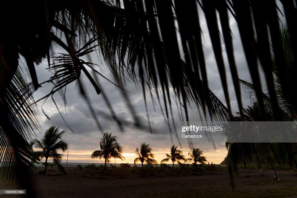 Caribbean Wallpaper Wednesday: Solomon Beach, St. John