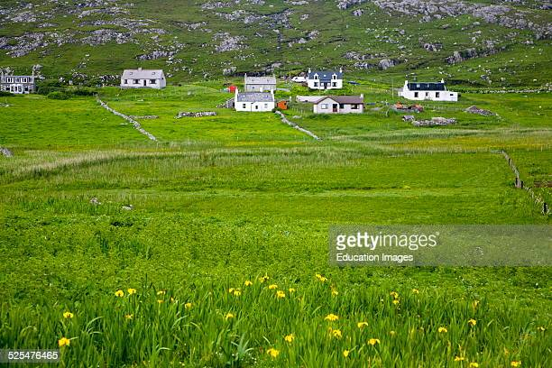 Landscape of countryside and croft houses in the rural settlement of Baile na Creige, Borgh, Barra, Outer Hebrides, Scotland.