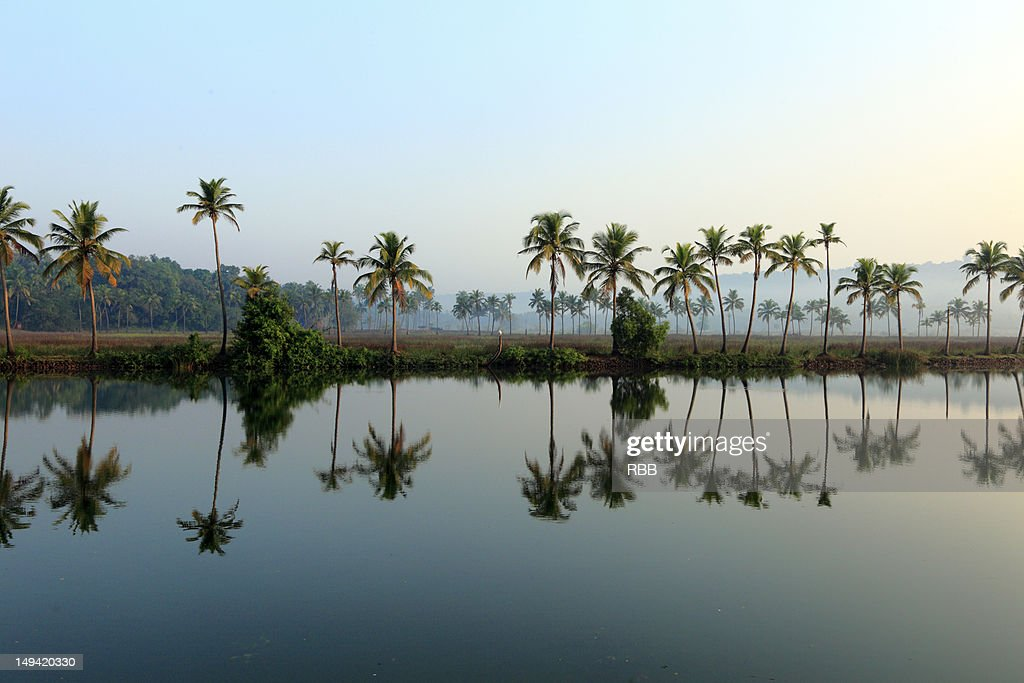 Landscape of early morning : Stock Photo