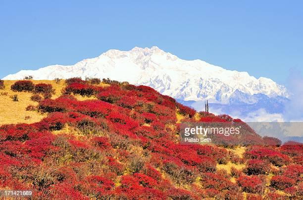 Landscape of Eastern Himalayas with Kangchenjunga