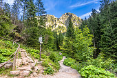 Landscape of hiking trail under mount of giewont, Tatra Mountains, Poland