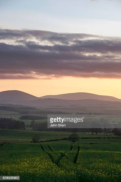 Landscape of hills and mountains at sunset; cheviots northumberland england