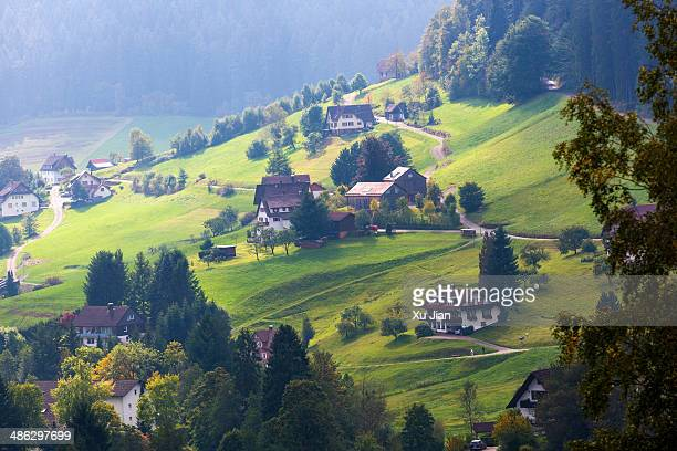 Landscape of Houses on Mountain in Black Forest