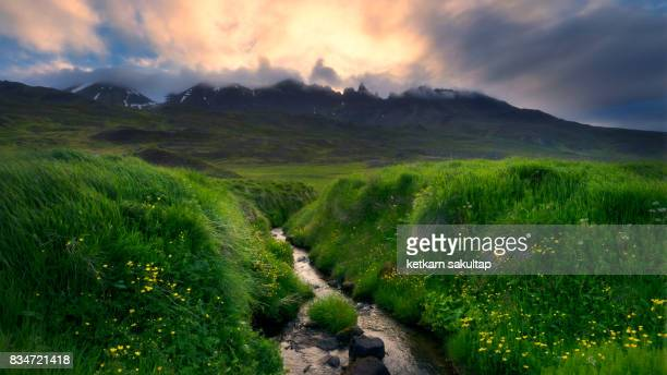landscape of iceland in summer. - east stock pictures, royalty-free photos & images