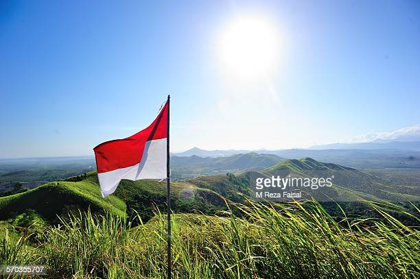 landscape of indonesia - indonesia flag stock photos and pictures