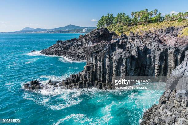 landscape of jusangjeolli cliff (korea natural monument 443) in jeju - jeju stock photos and pictures