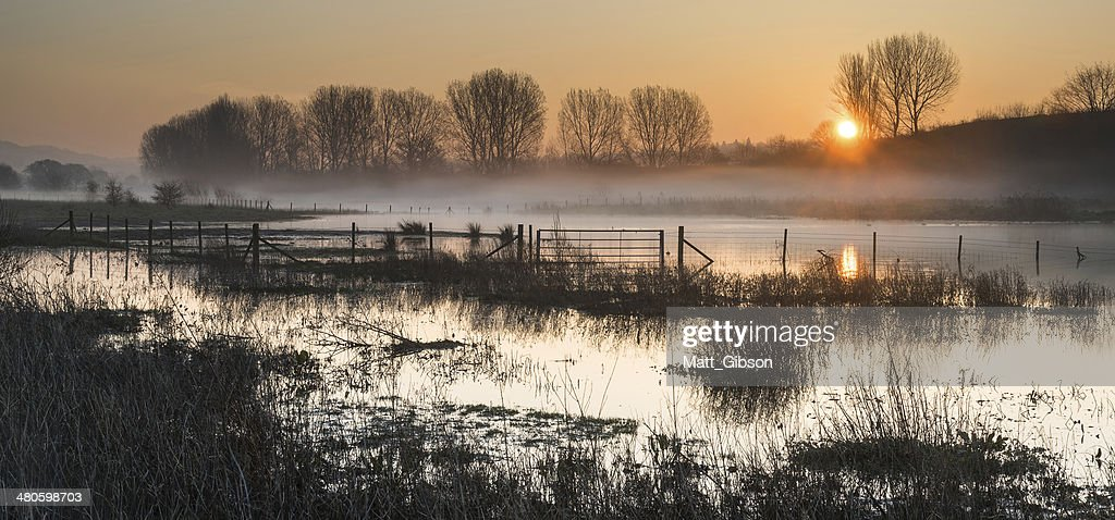 Landscape of lake in mist with sun glow at sunrise : Stock Photo