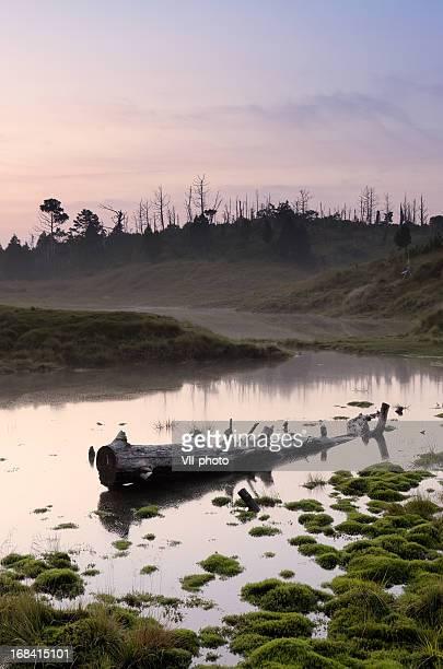 Landschaft des lake