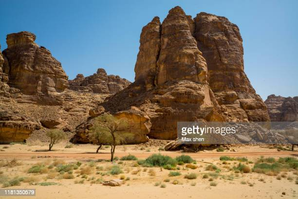 landscape of madain saleh, saudi arabia. - al madinah stock pictures, royalty-free photos & images