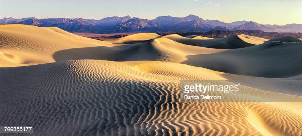 Landscape of Mesquite Sand Dunes, Death Valley, California, USA