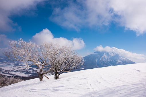Landscape of Mt Yotei, Hokkaido, Japan in winter season - gettyimageskorea