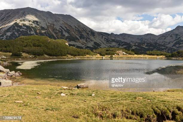 amazing autumn landscape muratovo hvoynato lake