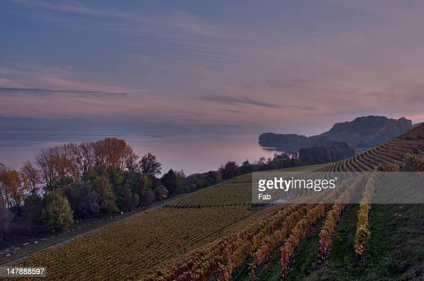 landscape of my region - ヌーシャテル ストックフォトと画像