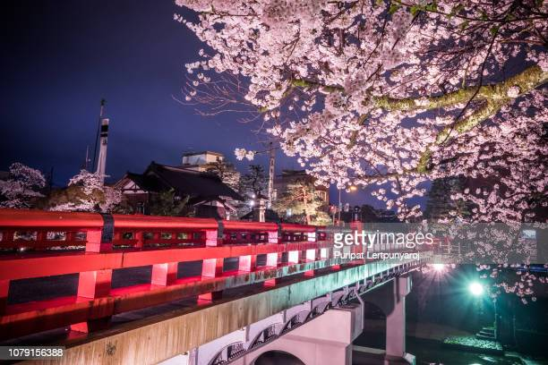 landscape of nakabashi bridge in the night on the cherry blossom full bloom season, takayama, japan - takayama city stock pictures, royalty-free photos & images