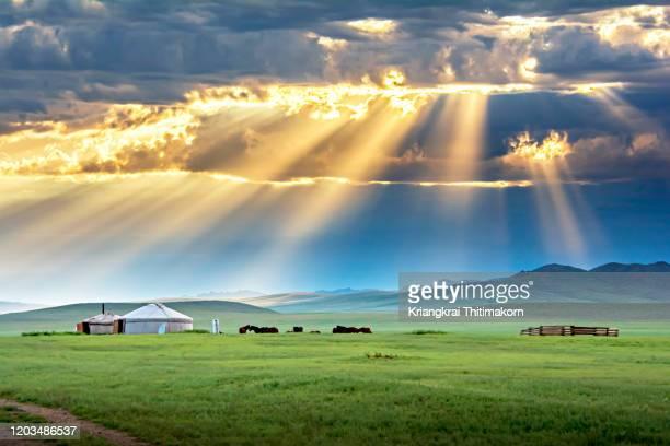 landscape of nature of mongolia. - 内モンゴル自治区 ストックフォトと画像
