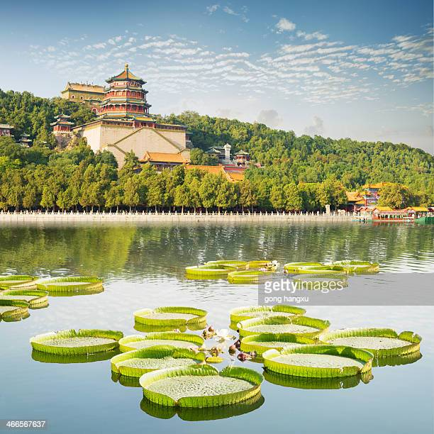 landscape of summer palace - beijing province stock photos and pictures