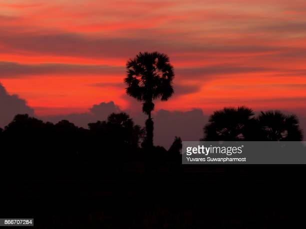 Landscape of Sunrise at Pattalung,Thailand. Silhouette .Twilght sky,orange sky,red sky,purple sky background.