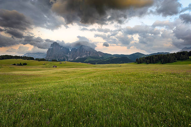 Landscape Of The Alps Wall Art
