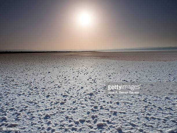 Landscape of the bed of a salty dry lake, with formations of salt and with the Sun  in the sky