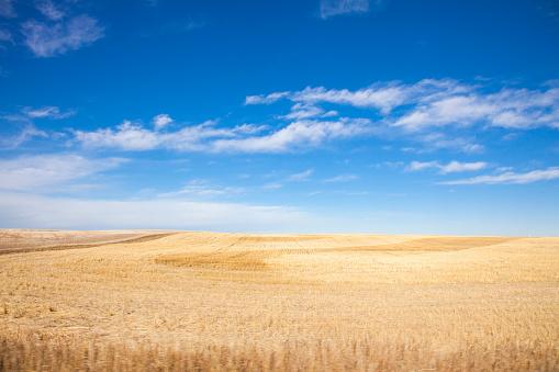 Landscape of the Canadian Prairies in Alberta, Canada 997896076