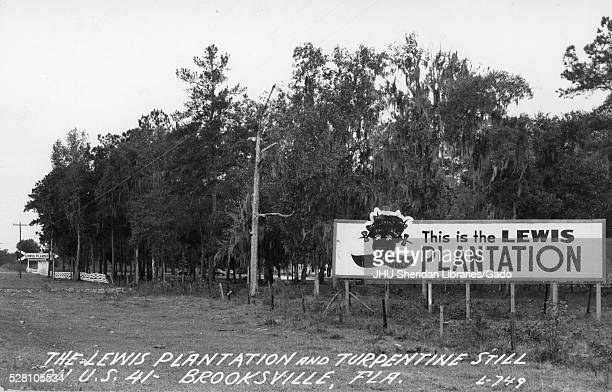 Landscape of the Lewis Plantation in Brooksville Florida with a large sign that reads This is the Lewis Plantation and has a crude image of an...