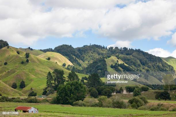 Landscape of the North Island of New Zealand