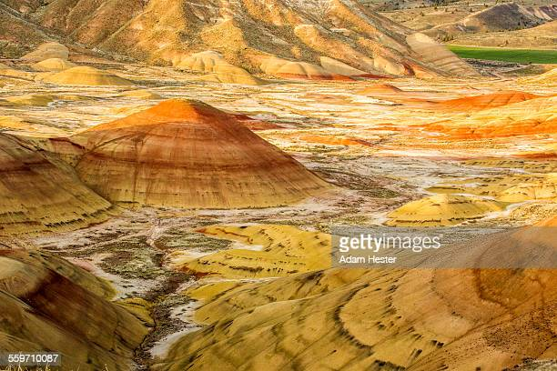 A landscape of the Painted Hills in Oregon