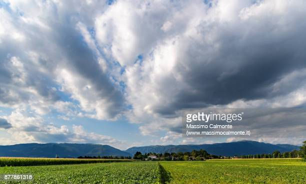 landscape of the veneto foothills with cultivated fields and pre-alpes visible at the beginning of valsugana - pre season bildbanksfoton och bilder