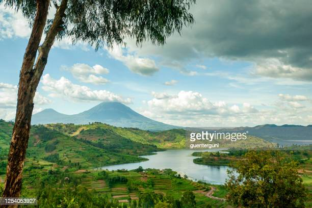 landscape of the virunga mountains in rwanda - virunga national park stock pictures, royalty-free photos & images