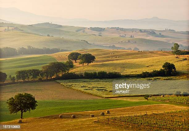 Landscape of Tuscan countryside