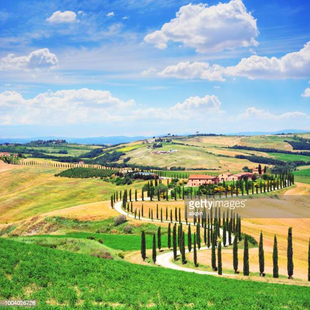 landscape of tuscany, italy - chianti region stock pictures, royalty-free photos & images