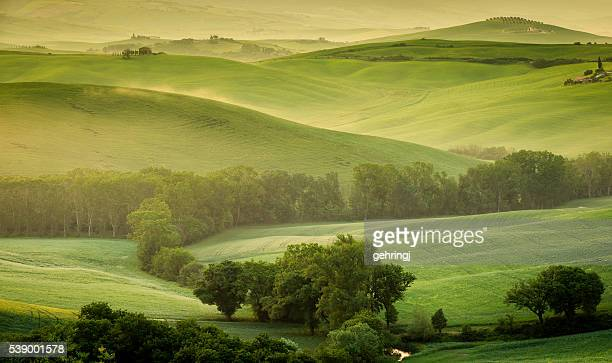 landscape of tuscany - hill stock pictures, royalty-free photos & images