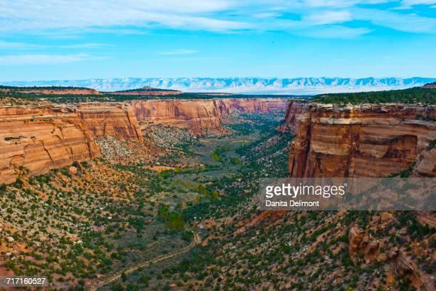 landscape of ute canyon, colorado national monument, vistas along rim rock drive, grand junction, fruita, colorado, usa - fruita colorado stock pictures, royalty-free photos & images