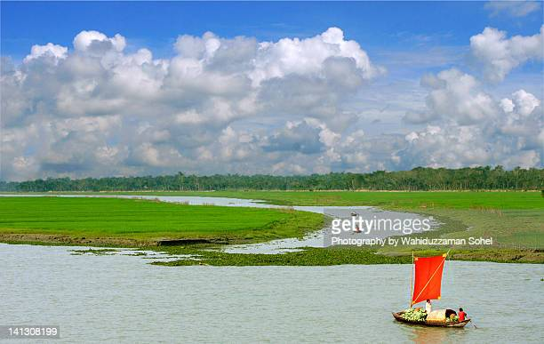 landscape of village - bangladesh village stock photos and pictures