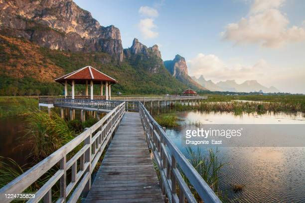 landscape of wooden bridge and lake in sam roi yod national park, prachuap khiri khan, thailand - hua hin thailand stock pictures, royalty-free photos & images