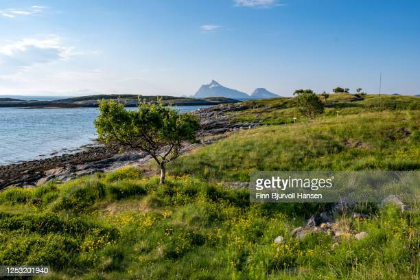 landscape on the island luroy, lurøy in northern norway - finn bjurvoll stock pictures, royalty-free photos & images