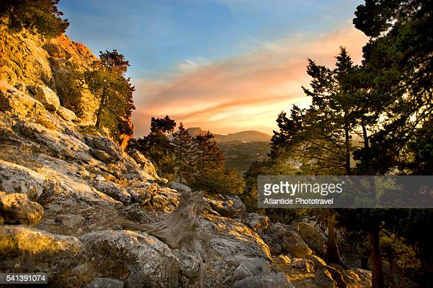 landscape on the trail to tsambika monastery - rhodes dodecanese islands stock photos and pictures